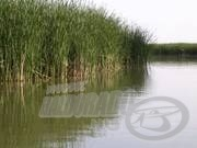 Nádi horgászat 1.rész - A felszerelés összeállítása