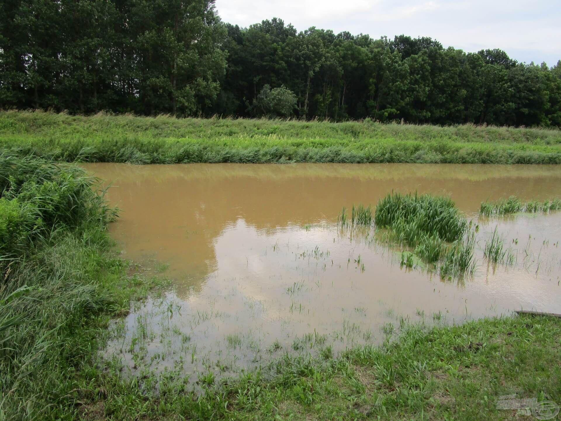 A nyári áradás nagyon ritka a Zala folyón