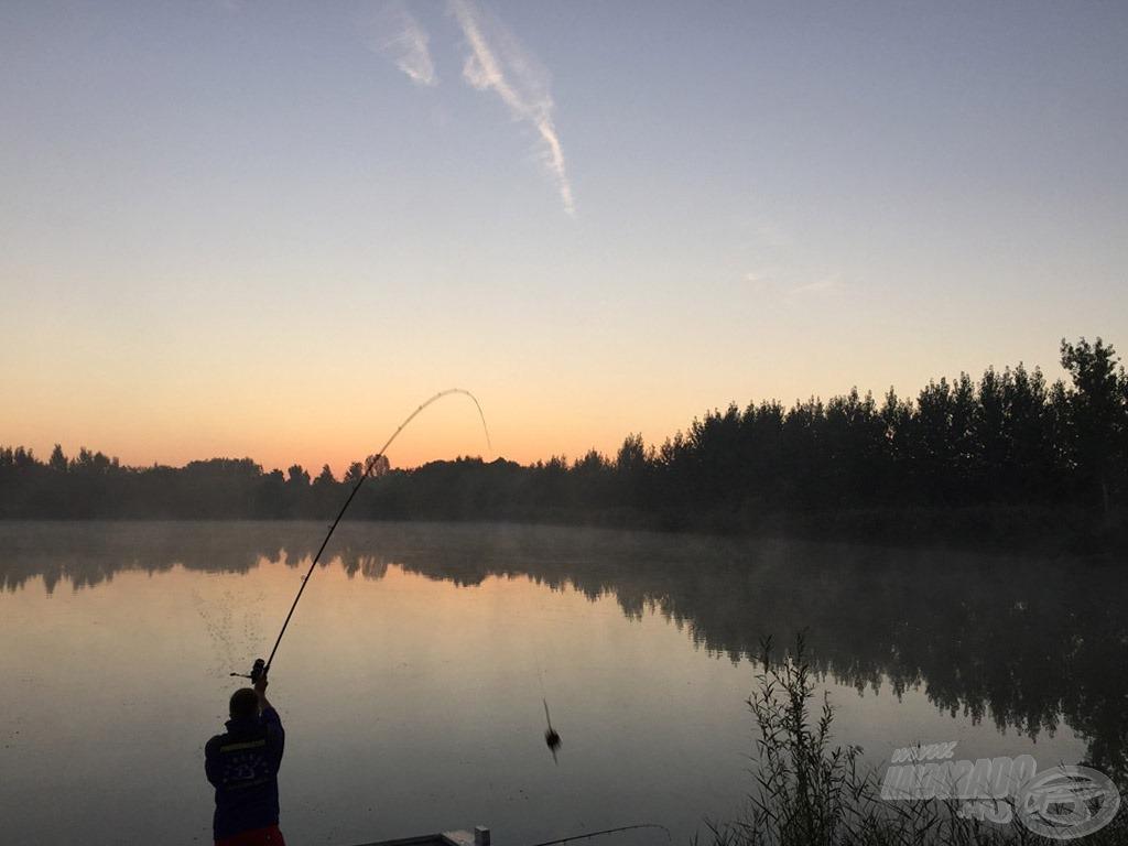 Hajnalban érkeztem a tóra. Horgászataim első momentuma a pontos etetés, kiakasztott zsinórklipsszel