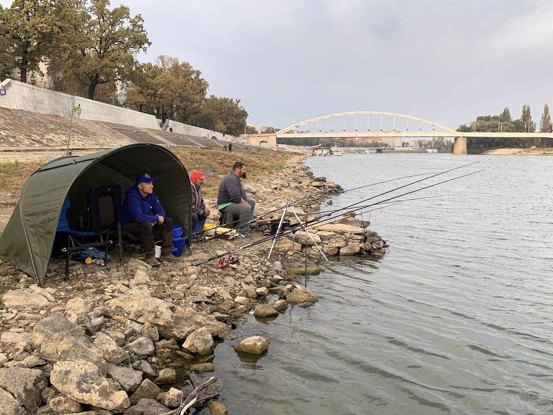 Már késő délután megkezdtem a horgászatot új horgászbarátaimmal a szegedi Tisza-parton