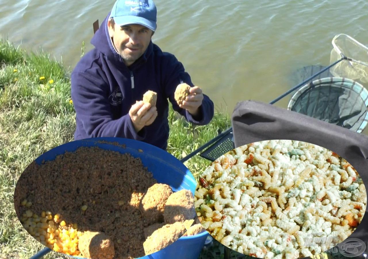 Házigazdánk, Levi javaslatára nagyszemcsés, pellettel, kukoricával dúsított etetőanyaggal és ragasztott csontival csalogattuk a halakat
