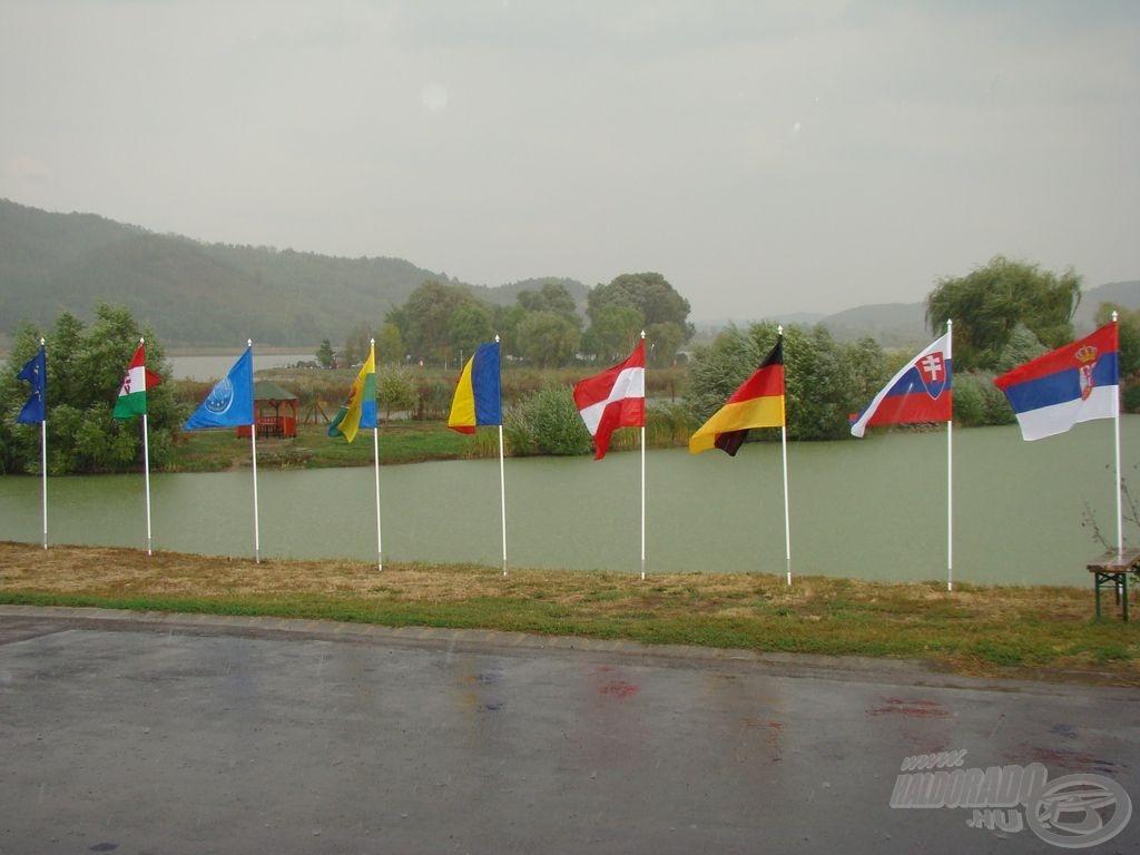 Zászlók a szélben