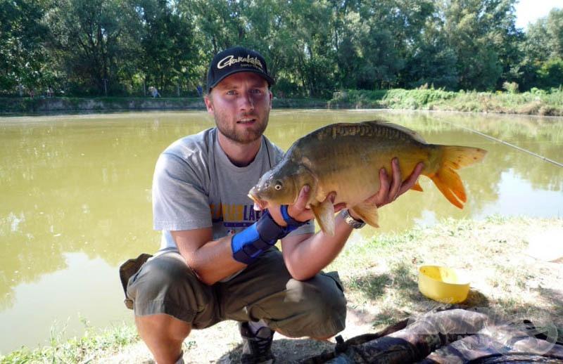 A Nagy Ponty pellet most is bizonyított. Ez a hal a maga 4,6 kilójával a nagyobbak közé tartozik ebben a tóban. Az 5-6 kg felettieket áthelyezik a legnagyobb vízbe