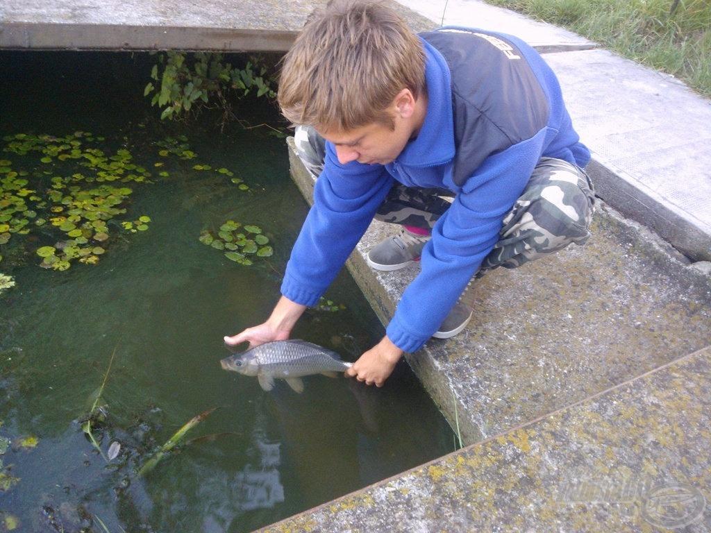 A horgászat utolsó hala. Természetesen a legkisebb halaknak is jár a kíméletes bánásmód, ez abszolút nem méretfüggő nálam