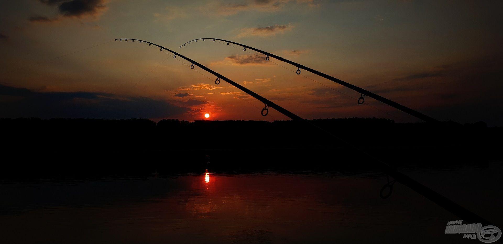 Egy pörgős horgászattal zártam a napot, mely tökéletes beharangozója volt a közelgő márnaszezonnak