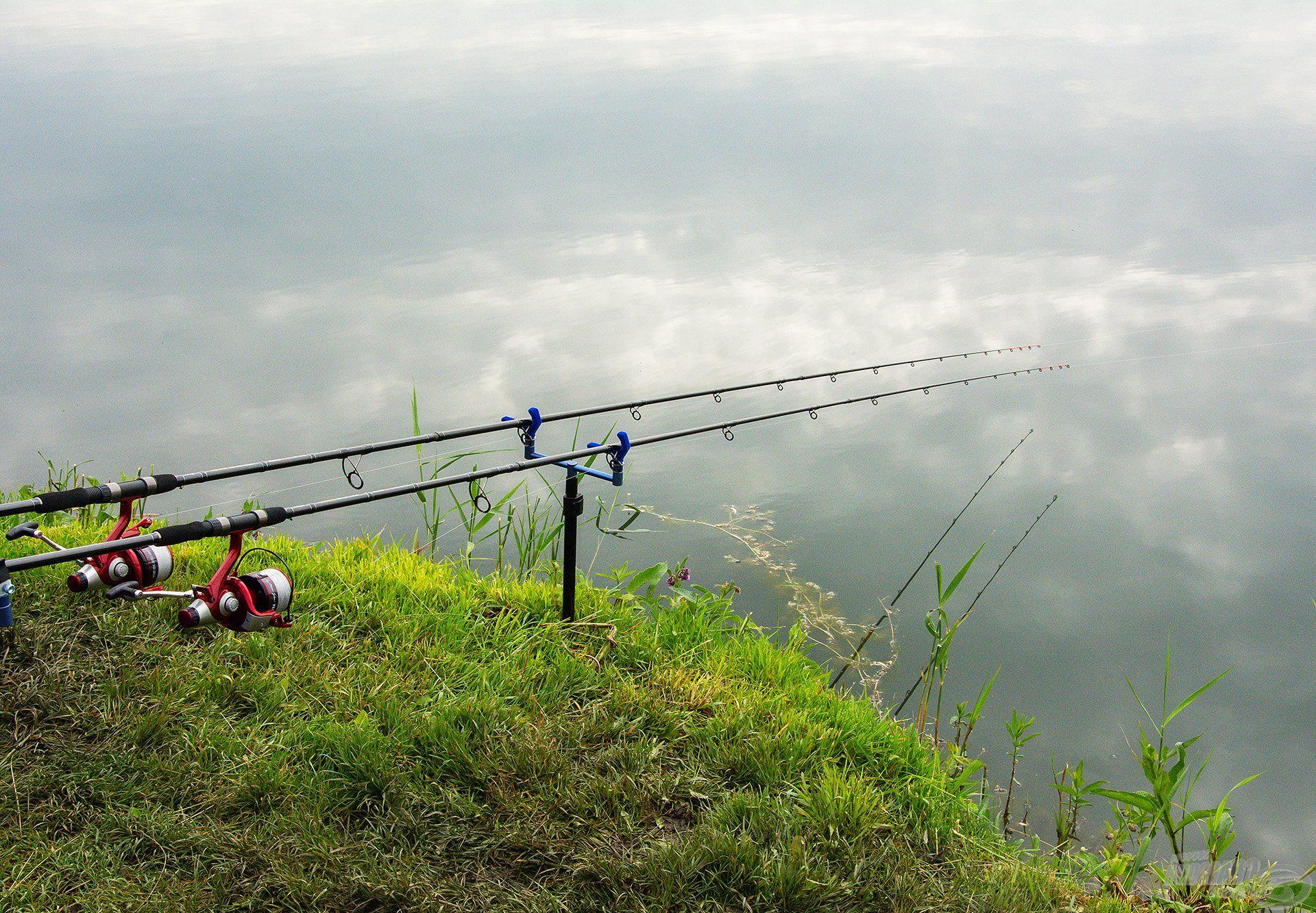 Hamar a helyükre kerültek a feederbotok, mi pedig izgatottan vártuk, mit tartogat számunkra a tó?!