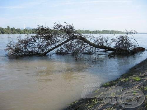 A Duna most nem fogad horgászokat!