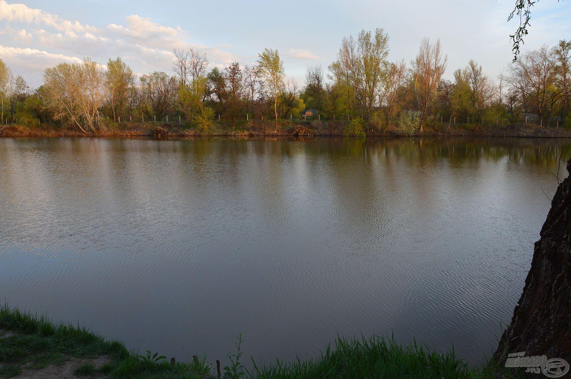A Biztató Horgásztó 2-es helyén horgásztunk, ahonnan a túlpart pereme elé dobva kerestük a pontyokat