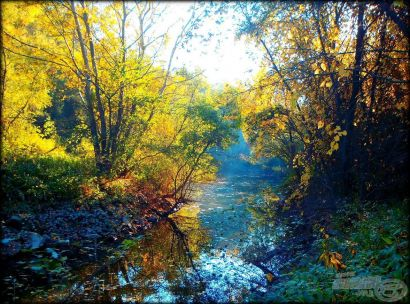 Ősz a folyón - Amikor a Duna elkényeztet