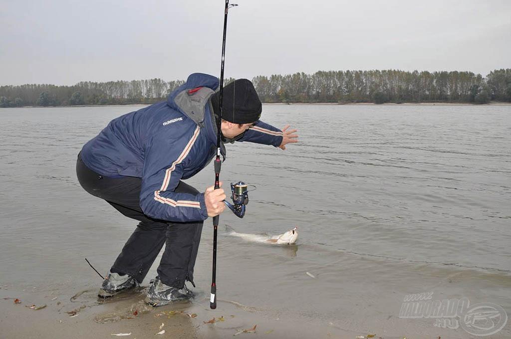 Ekkora halért érdemes vízbe gyalogolni, még ha nem is vízhatlan a bakancsunk