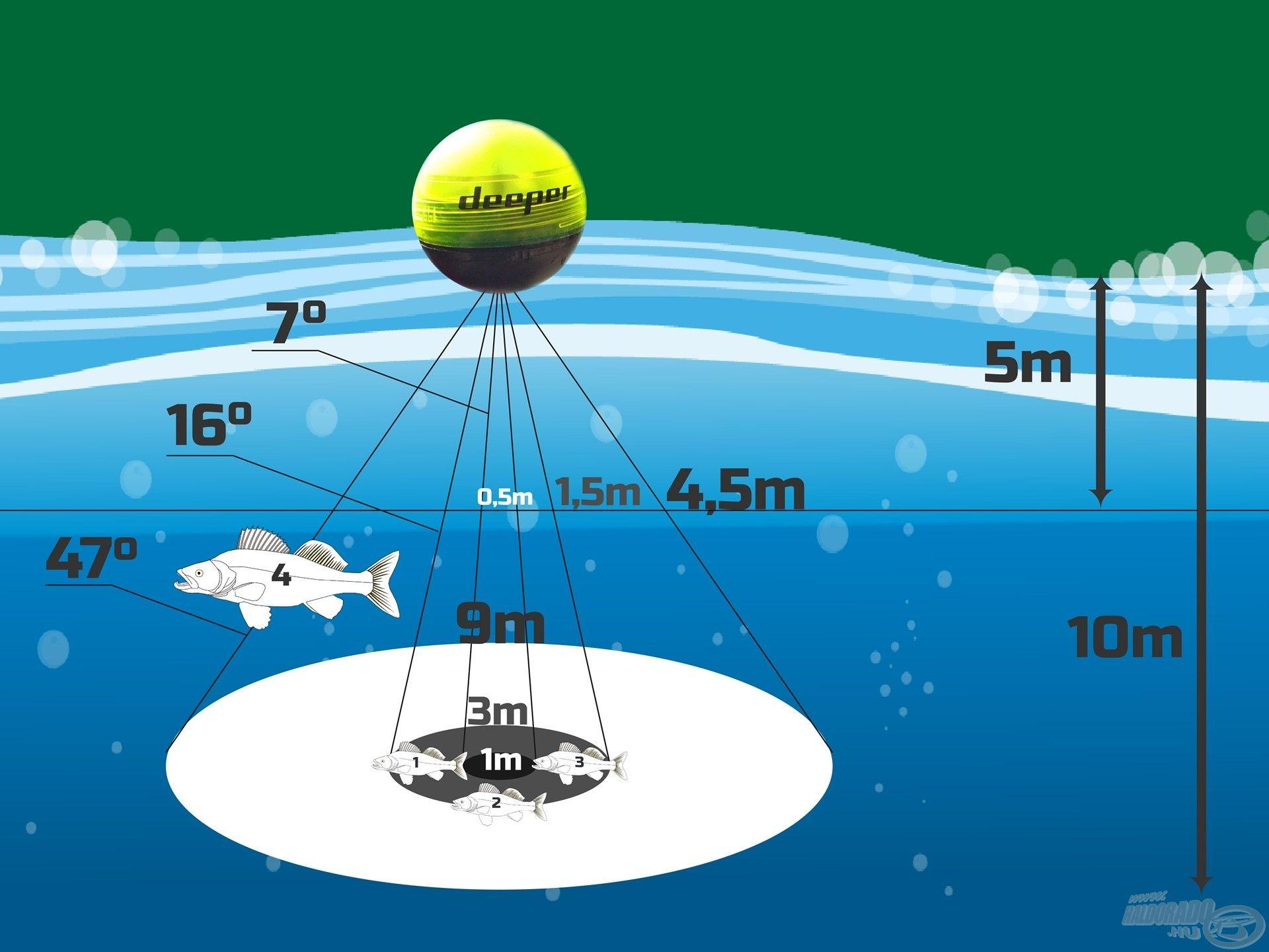 Látószögek, vízmélység és a letapogatott terület nagysága
