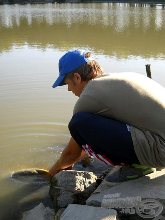 Minden hal megérdemli a kíméletes bánásmódot. Szerintem ez a horgászat egyik legfontosabb része