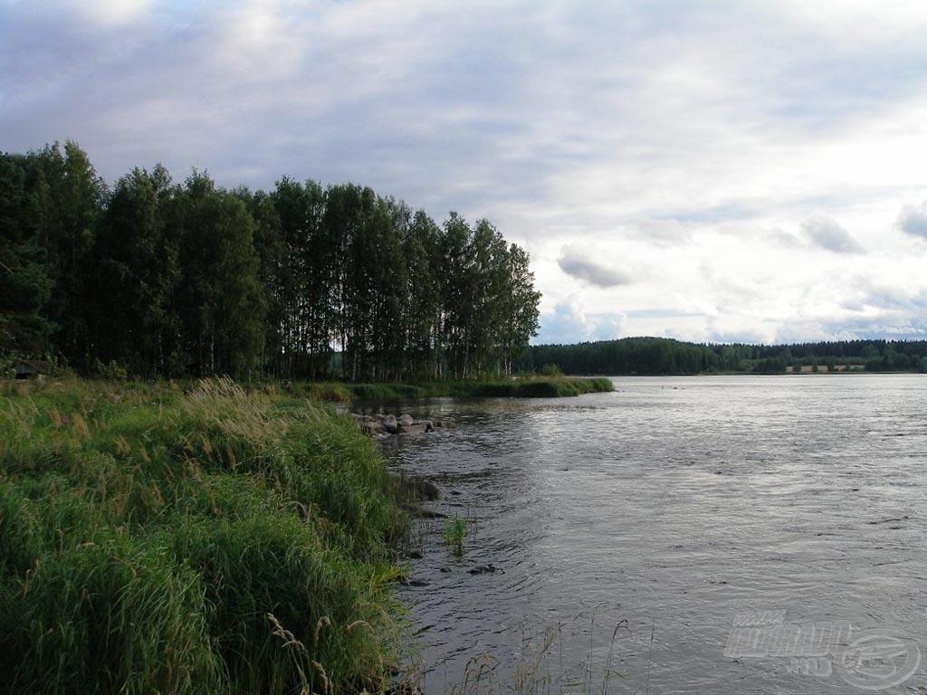 A folyó torkolatánál kiszélesedik és meglassul a vízfolyás
