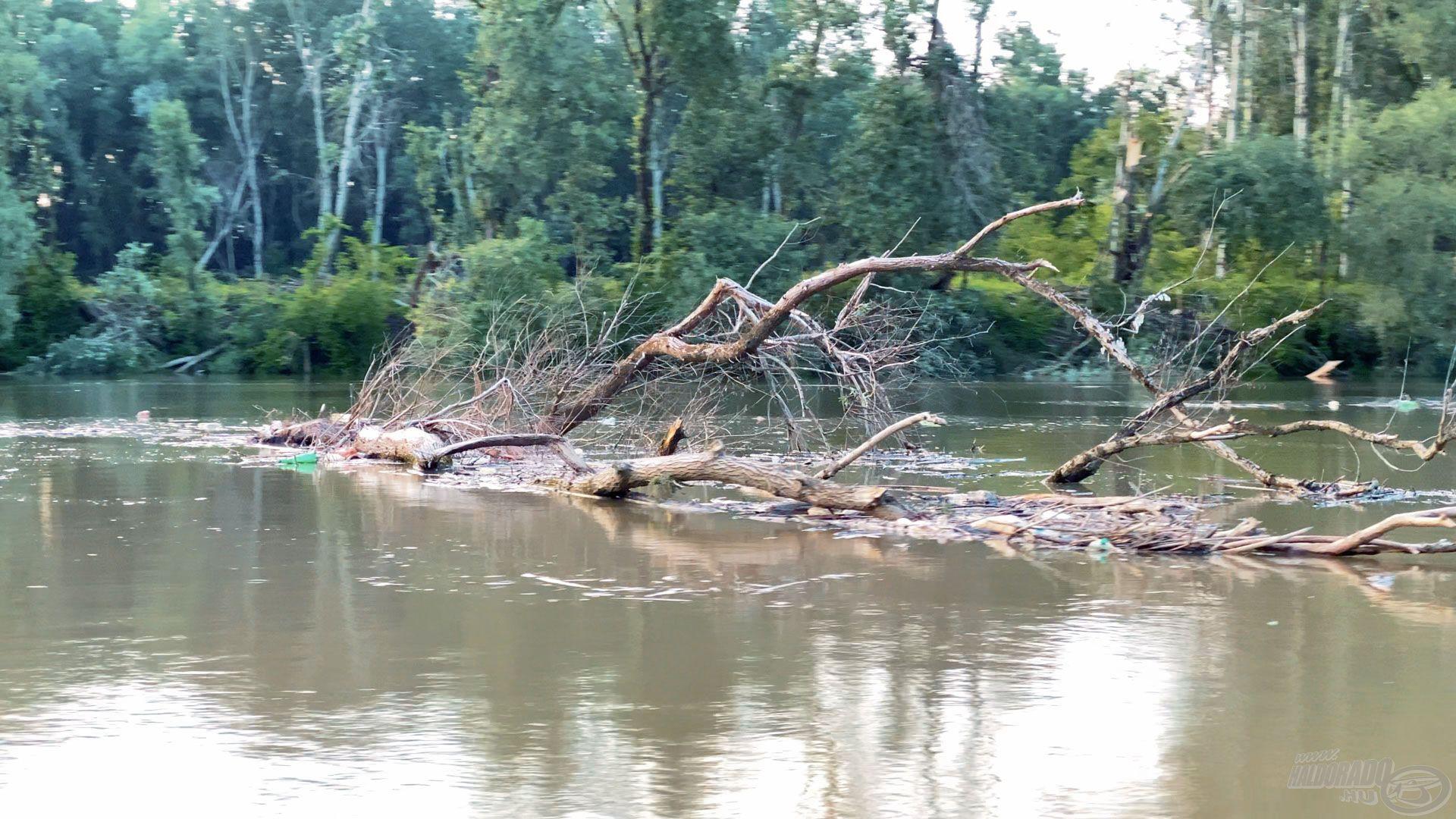 E mellett rengeteg frissen vagy korábban kitört fát is magával hoz a folyó, ezek között lavírozni éjszaka VESZÉLYES