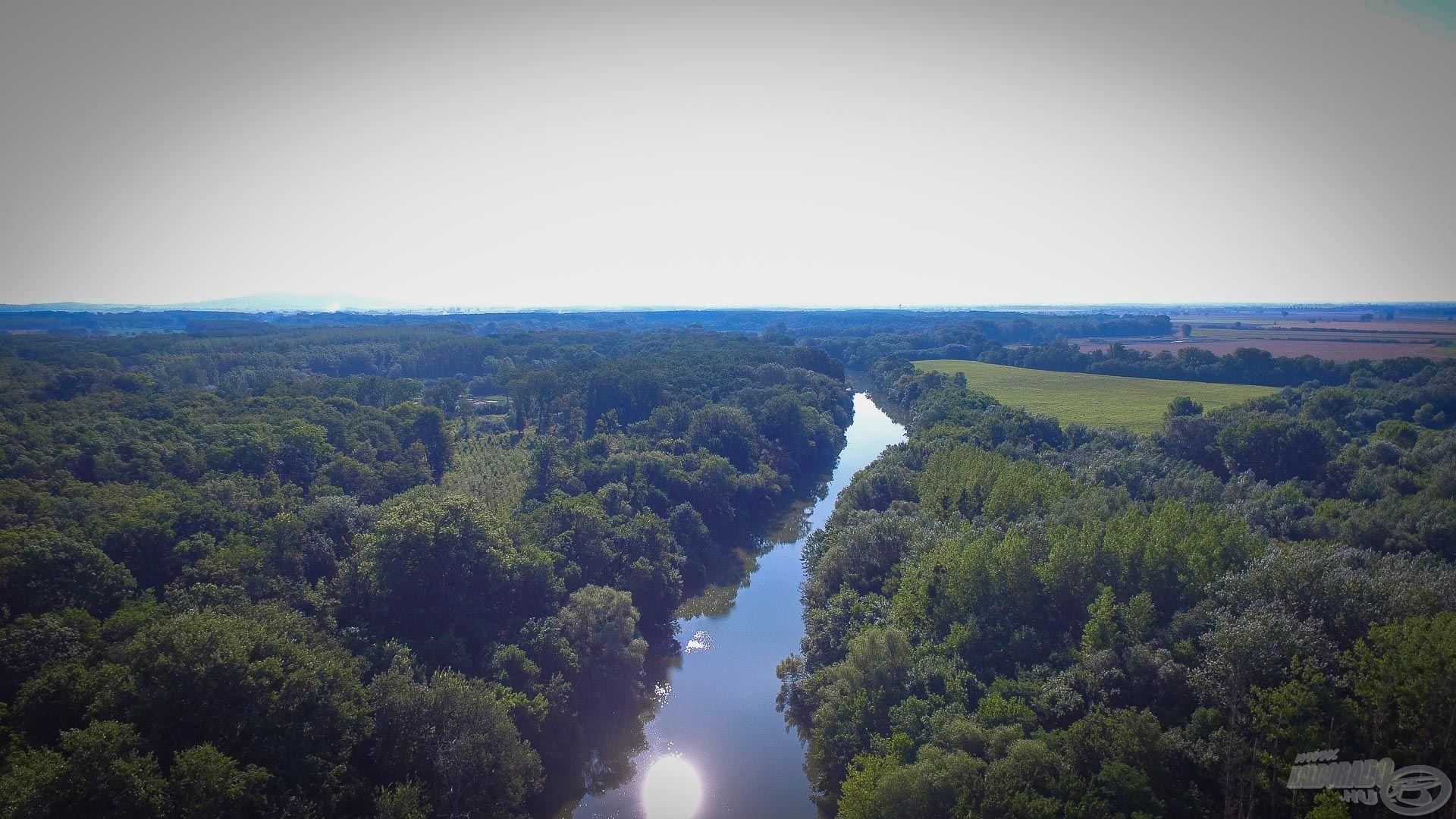 Az egyik kedvenc folyóm a Bodrog, ami a szememben egy rövid, keskeny, meghorgászható víz