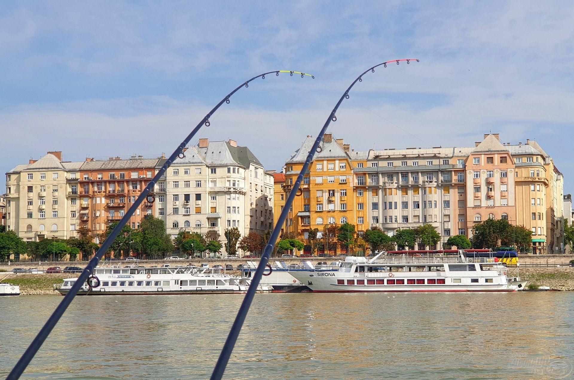 Több, mint két évtized után tértem vissza a Margitszigetre horgászbottal, mely rendkívül felemelő érzés volt