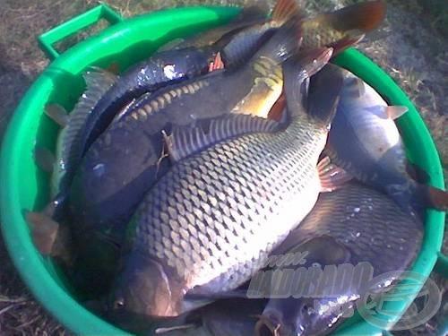 Rendhagyó horgászat volt, annyi szent