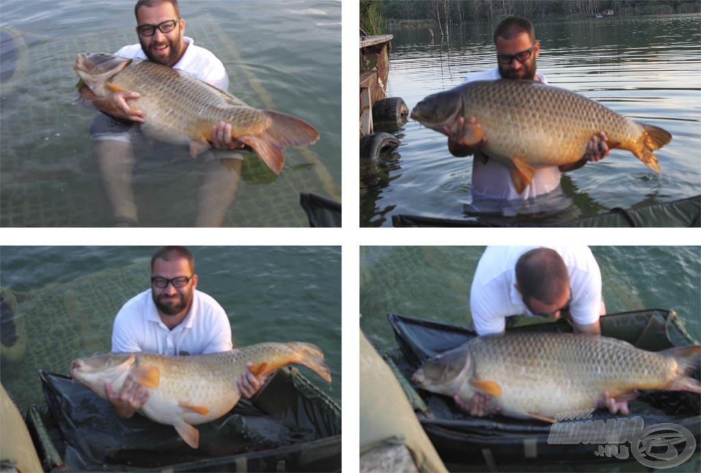 Bár a fotózást elrontottuk, talán így is jól látszanak a hal méretei