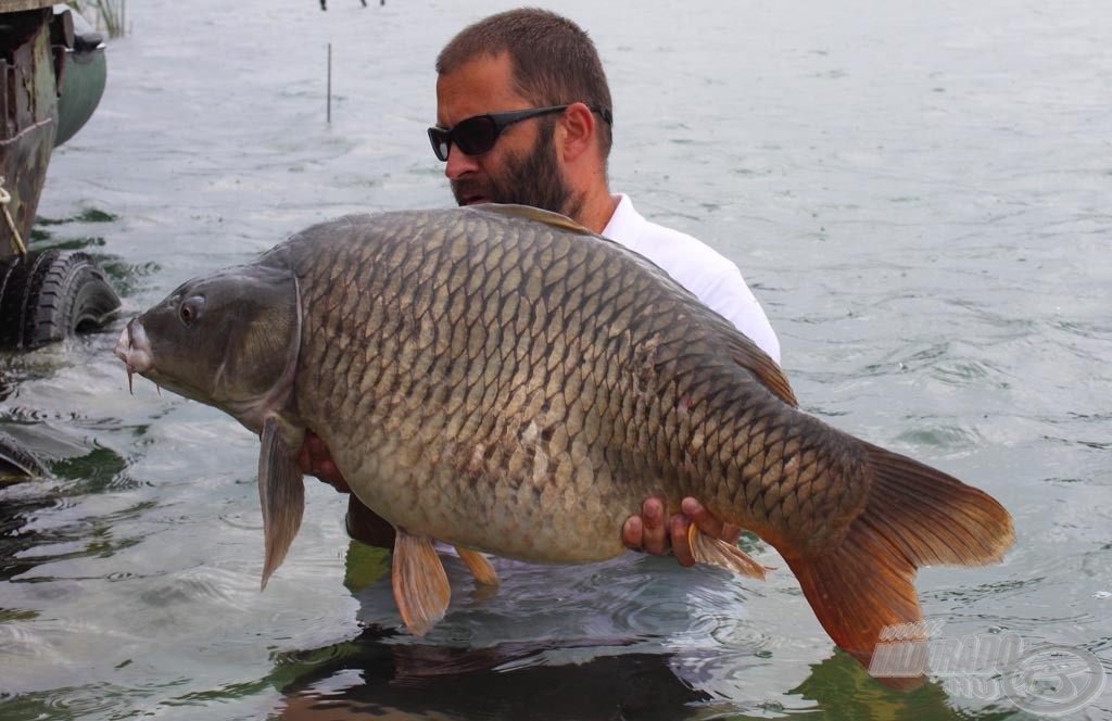 20,50 kg