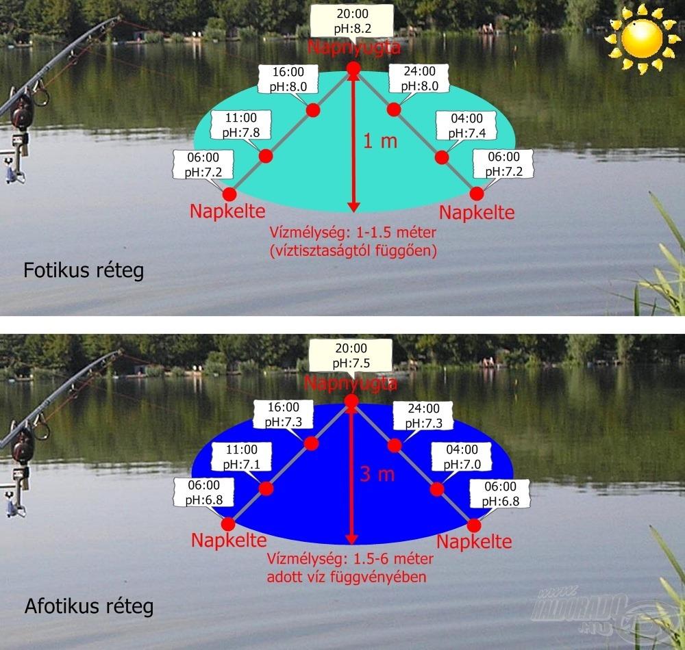 Így alakul a pH változása egy tetszőleges napon, a két rétegben napsütéses…