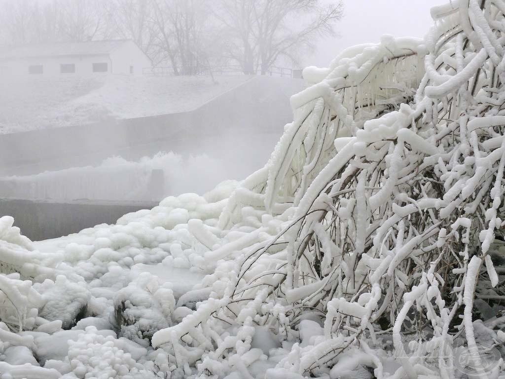 Vastag jégpáncél borítja a fákat