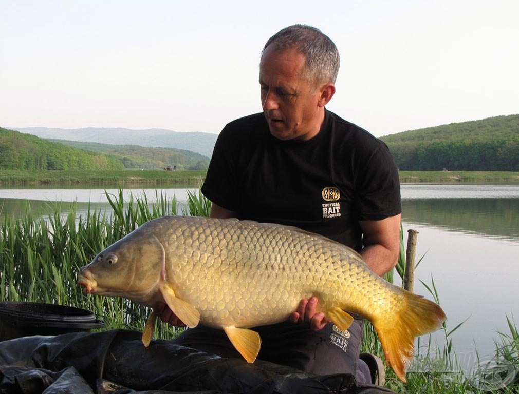 Fényképezéskor a halat tartsuk közel a matrachoz, hogy ha megugrik, akkor se érhesse baj