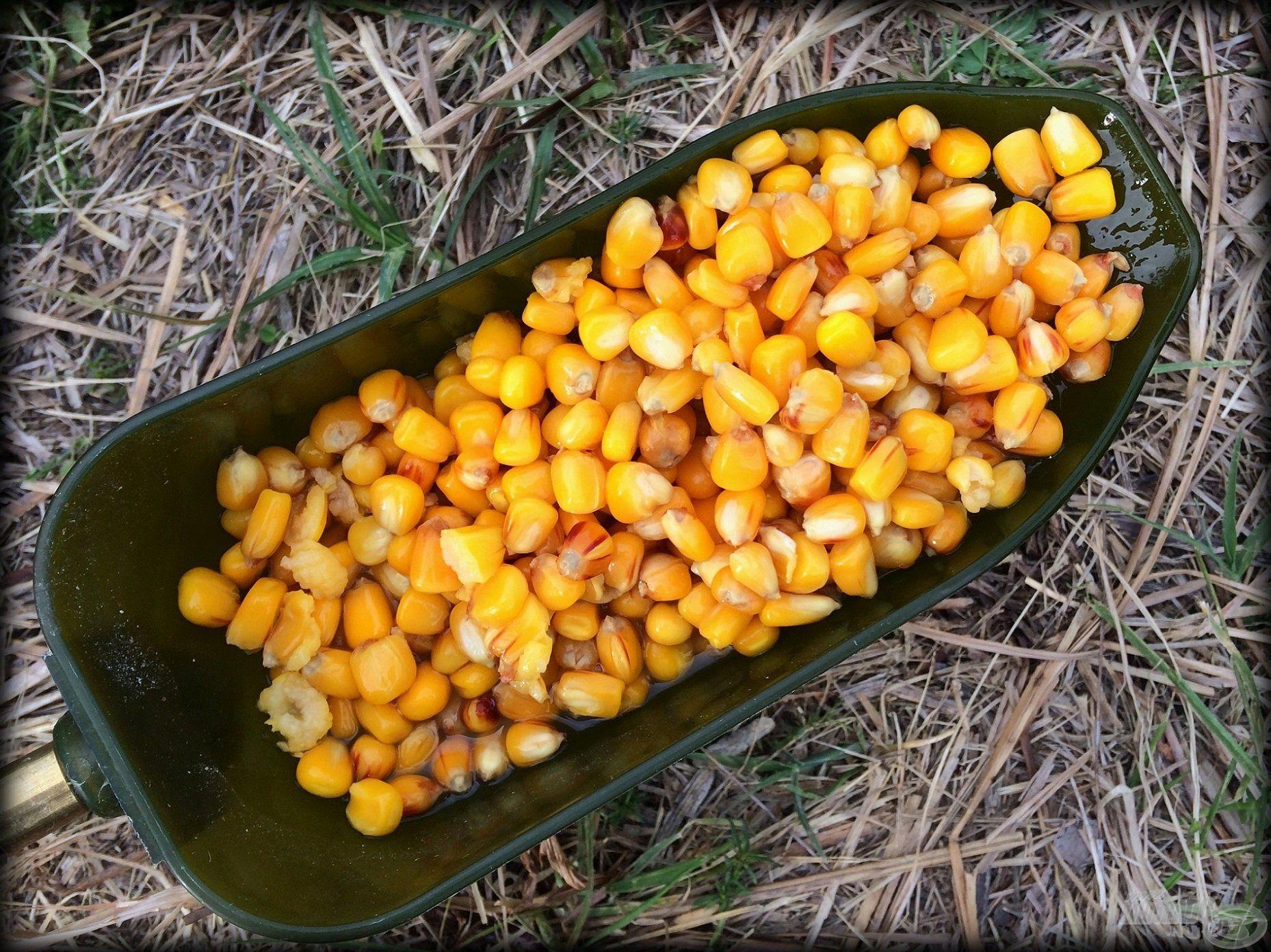 Itt, ezen a vízterületen a főtt kukoricának nincs párja