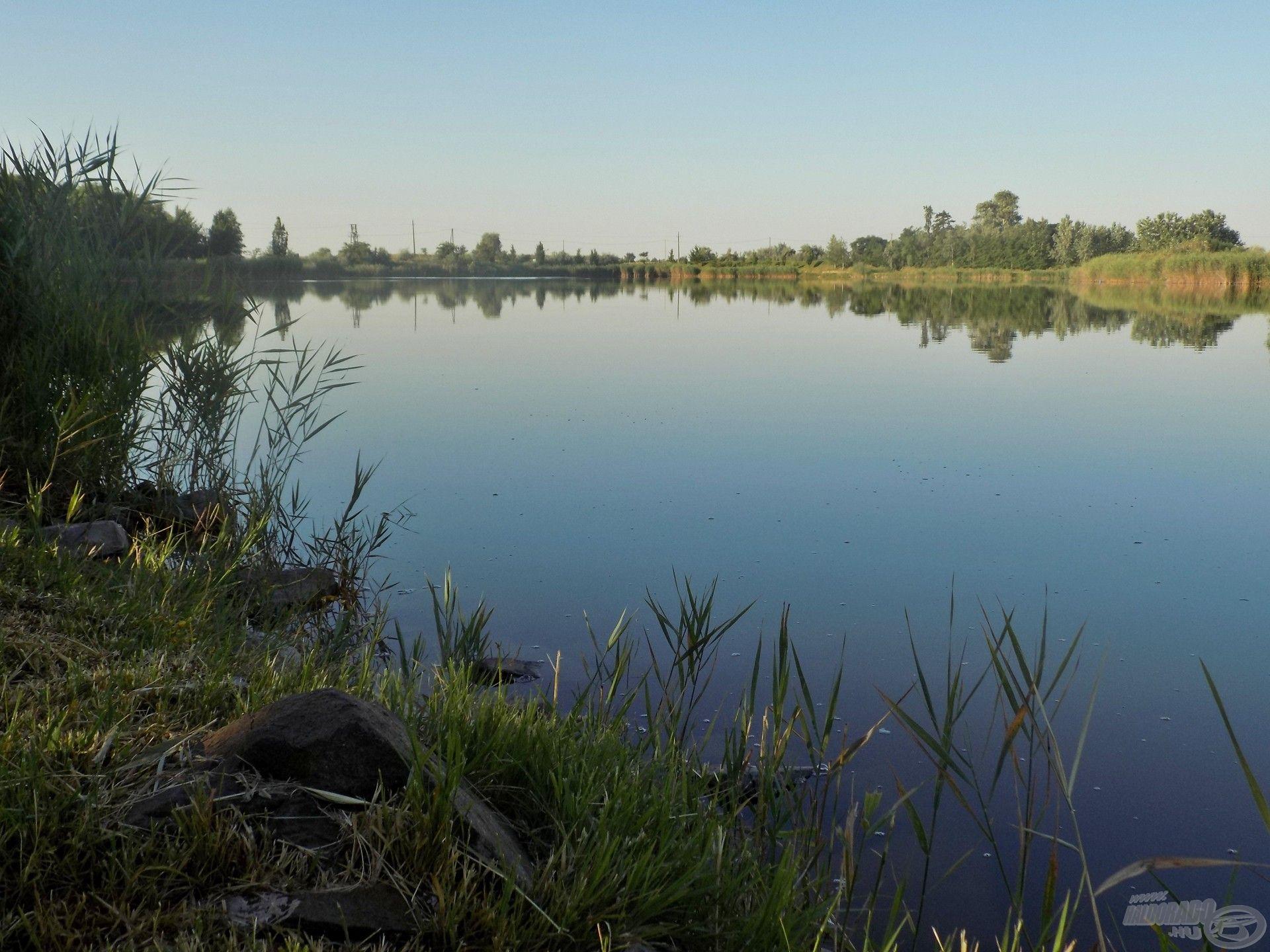 A számomra legkedvesebb vízterületre látogattam el egy rövid nyári horgászatra, az orosházi Új-Homokbánya Horgásztóra. Megunhatatlan lehetőségeket, élményeket kínál ez a vízterület bárki számára