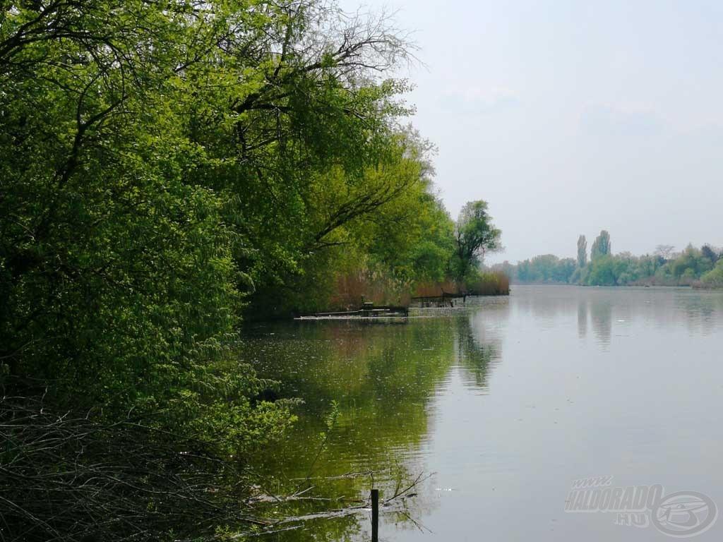 A Ráckevei (Soroksári)-Duna látképe a horgászhelyemről