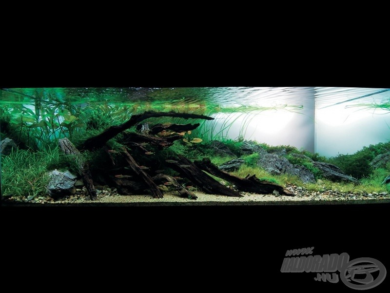 Ashy range 120 x 60 x 45 (cm), 324 liter