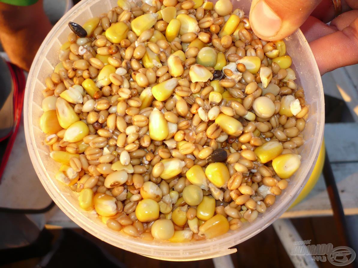 Kukorica, búza és galambtáp