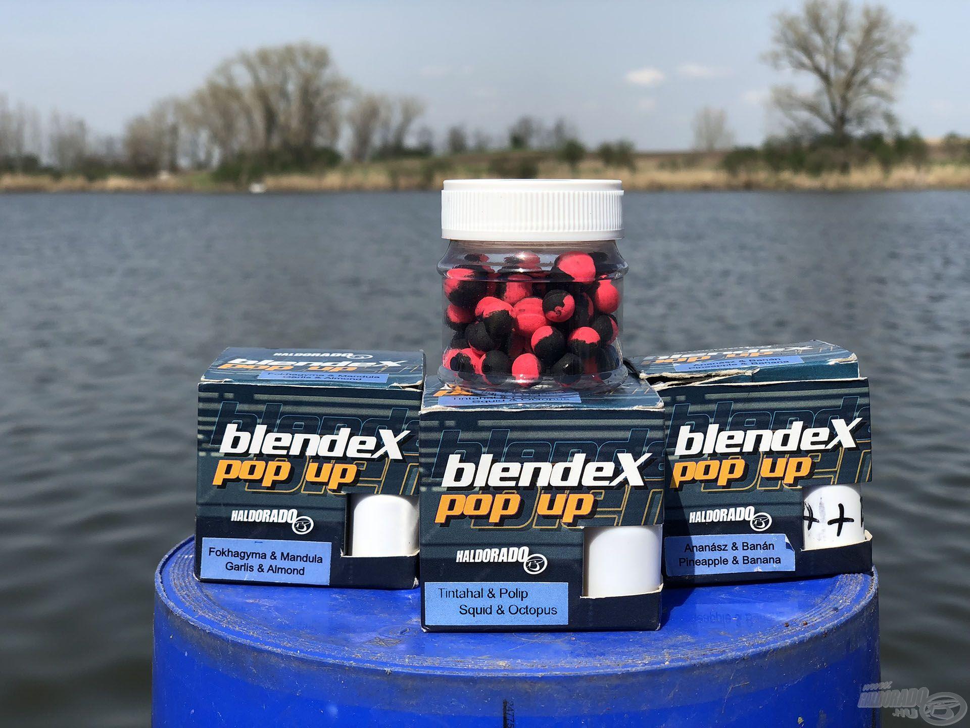 A nyerő csali a HALDORÁDÓ BlendeX Pop Up Method - Tintahal & Polip ízesítésű volt