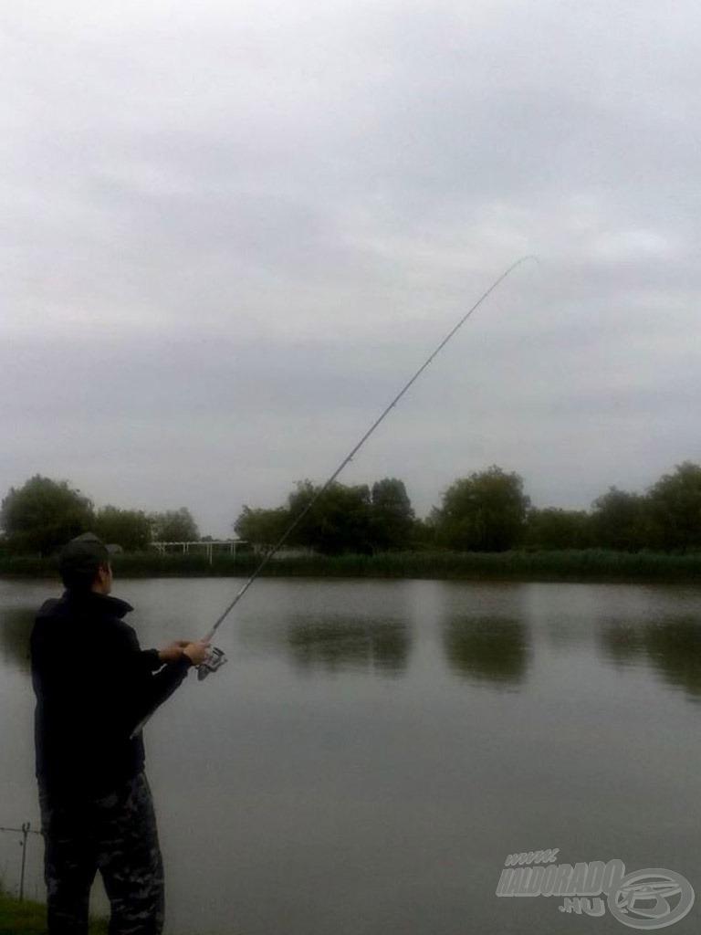 Új horgászbotom első akciója…