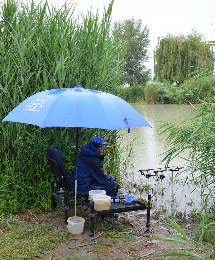Egy esős nyári nap ideális a halfogás szempontjából