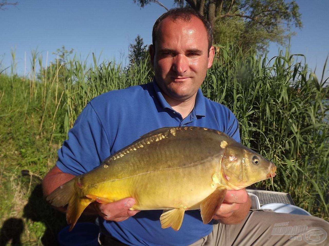 Rybyéra versenypraktikák - A ponty horgászata