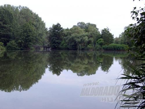 A tagolt vízre még egy híd is jutott. A környezet egyébként meggyőző: nagy fák, bokrok, nádasok
