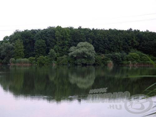 A Sárvár felé eső oldalon sok a különböző fafaj a parton, mögöttük pedig ott egy jól takaró erdősáv