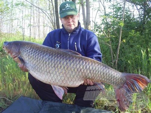 Török Ákos és a 30,5 kg-os amur. A hal impozáns méretei mellett feltűnő a hatalmas farokuszonya