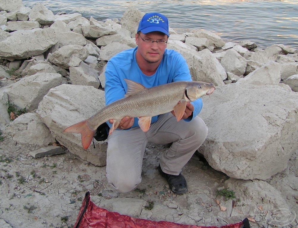 Nem tudom, hogy a kép mennyire adja vissza, de ez fantasztikusan gyönyörű hal volt! Ezt a halat nem valószínű, hogy el fogom felejteni…