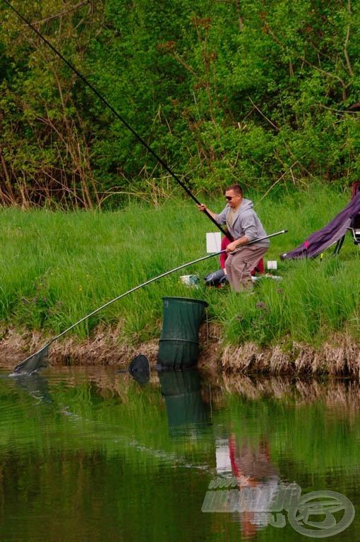A halak itt is nagyra értékelték az etetést