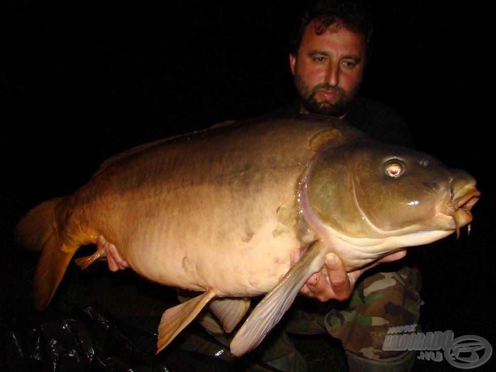 Tánc a kapitális halakkal az ausztriai FZZ tavon