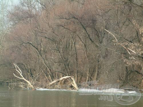 Megáradt a vén folyó, esélytelen a horgászat