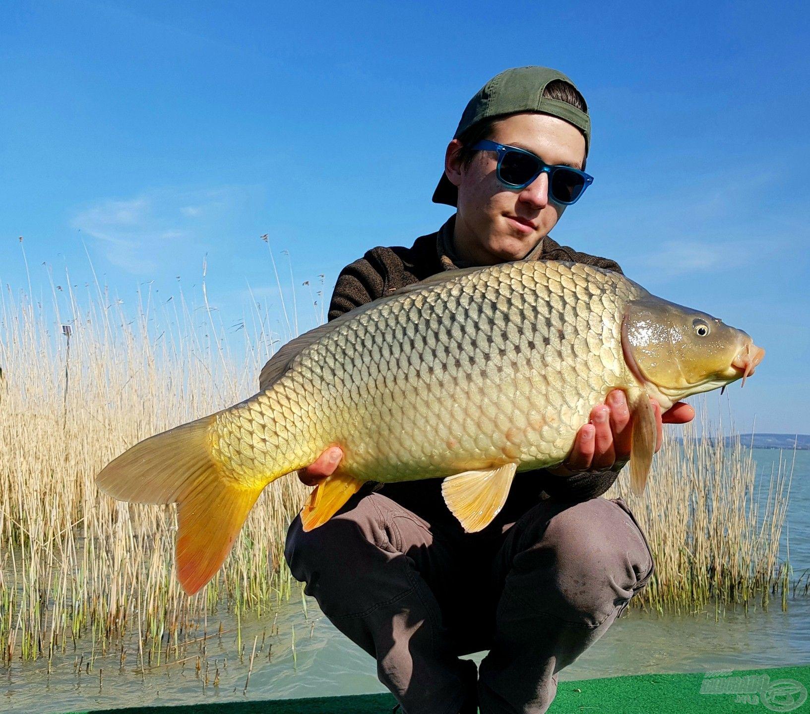 A délelőtt legszebb hala ez a szép töves volt