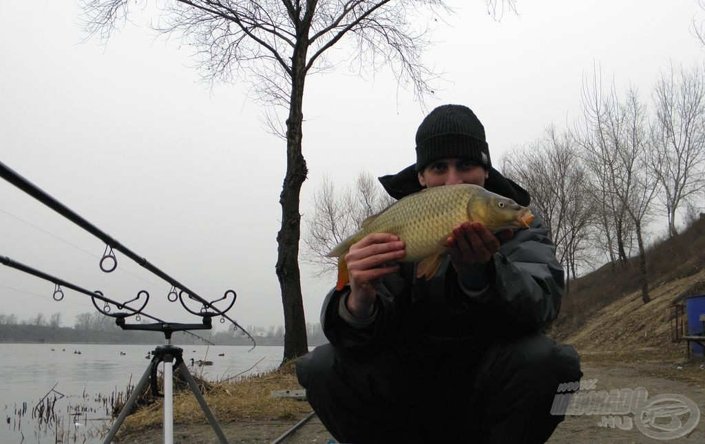 Az év első hala, februárban