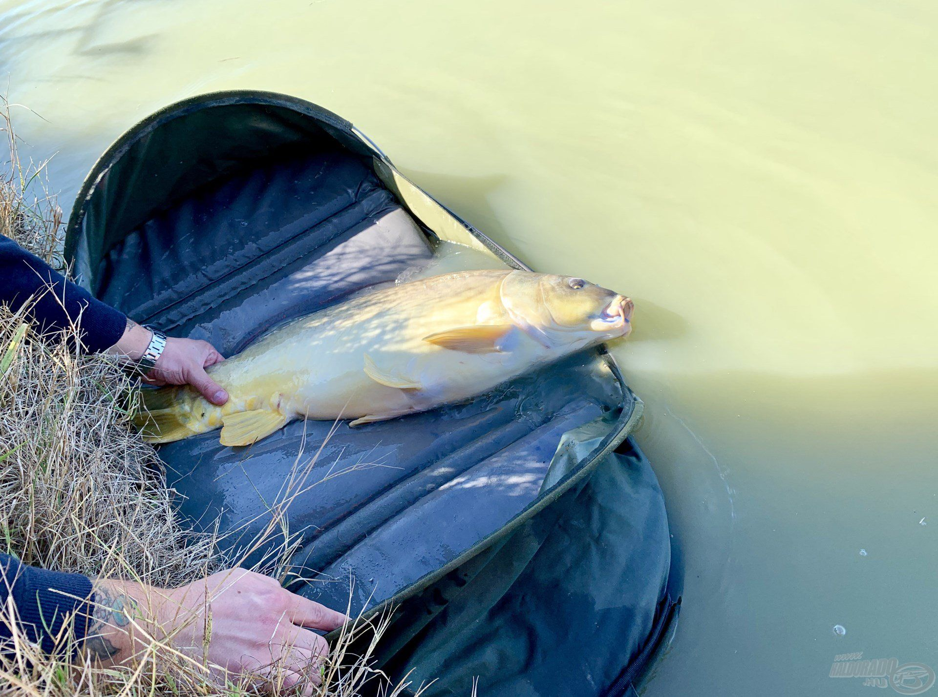 Sok horgásznak fog még örömet okozni