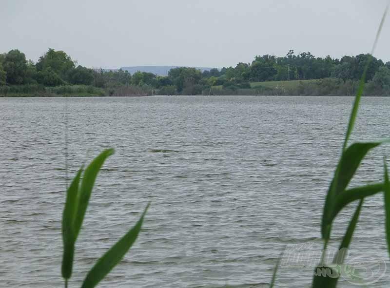 A 40 hektáros tó halállománya biztosítja a jó versenyeredményeket