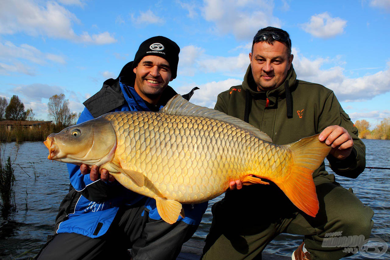 Ezzel az egyszerű csalizási módszerrel tudtam becsapni a horgászat legnagyobb, közel 15 kilós pontyát, amelynek megfogását a kamera is megörökítette (a képen mellettem Király Attila, a Király Ponty Horgásztó tulajdonosa)