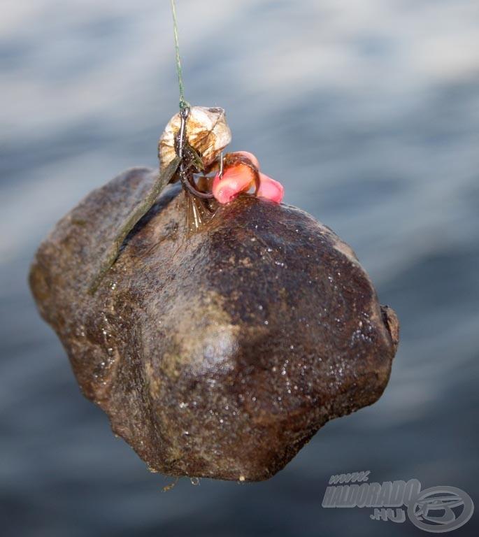 Az éles kövekkel, kagylókkal, akadókkal és vízi növényzettel borított meder megkövetelte az átlagosnál erősebb felszerelést