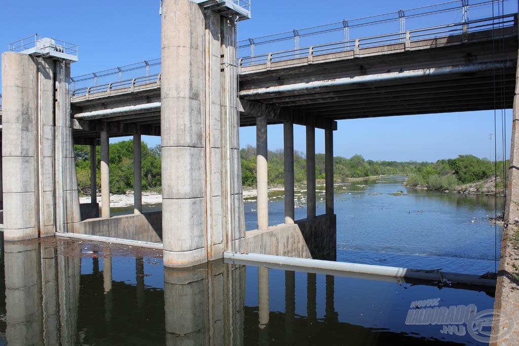 A Colorado folyó vízét zsilipekkel szabályozzák, amelyek drasztikusan lelassítják annak folyását, ideális életteret létrehozva a halaknak