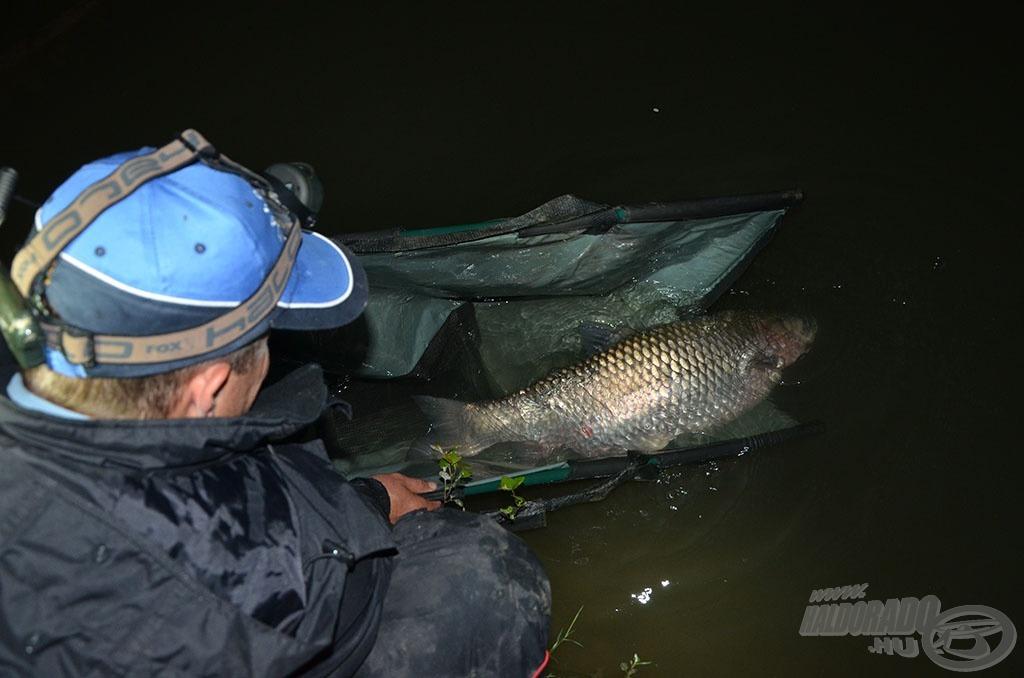 Egy kapitális hal visszaengedése legalább akkora öröm számomra, mint annak kifogása!!!